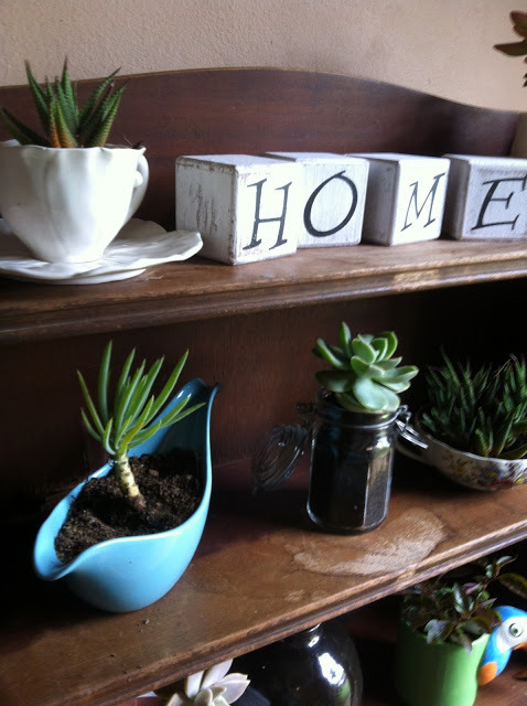 plants, upcycling