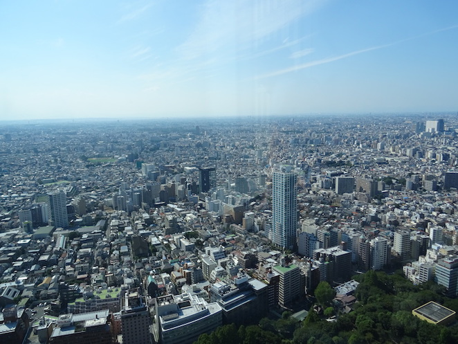 tokyo, shinjuku, tourism, building, skyscraper, attraction, view, observation deck