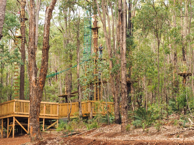 trees adventure, trees adventure perth, lane poole reserve trees adventure, tree obstacle course perth, high ropes course perth, trees adventure dwellingup, trees adventure review, trees adventure high ropes park