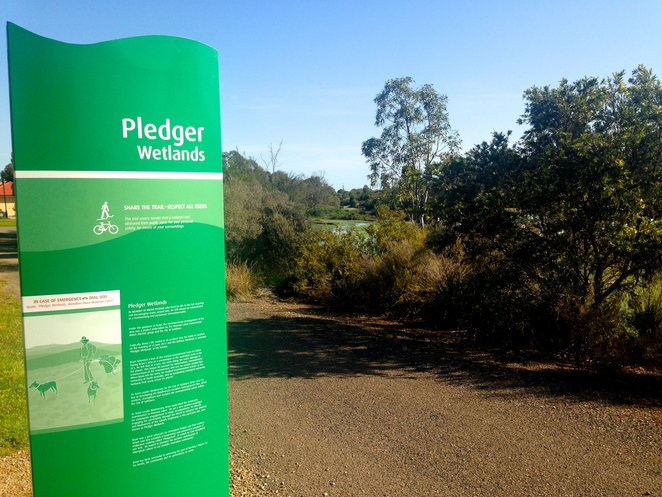 wetlands wetland pledger walking south australia mawson lakes adelaide trail