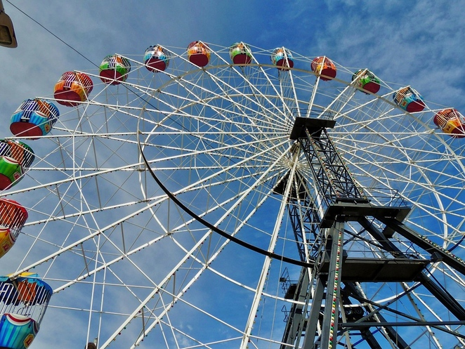 royal show adelaide, how to save money, royal show adelaide, royal adelaide show showbags, royal adelaide show, royal show adelaide jobs, family events, activities for kids, in adelaide, ferris wheel