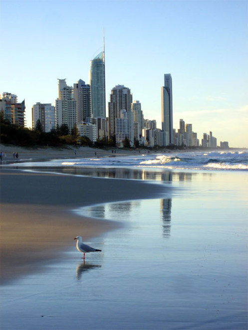 The tall buildings of Surfers Paradise