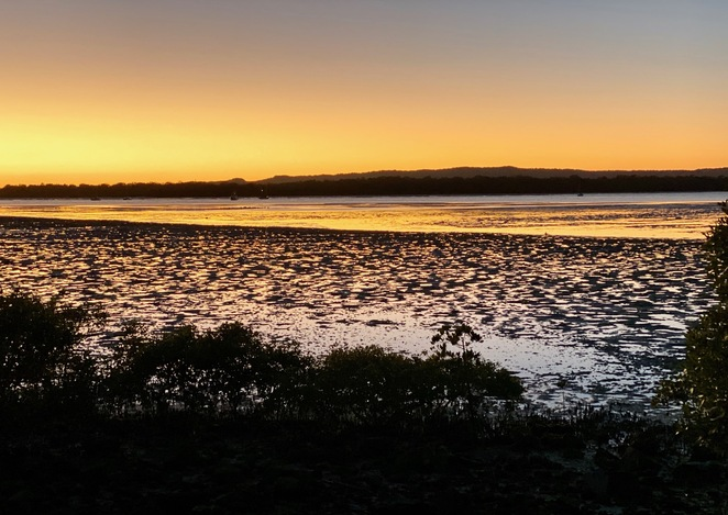 The mudflats, so important to many migratory birds, are exposed at low tide