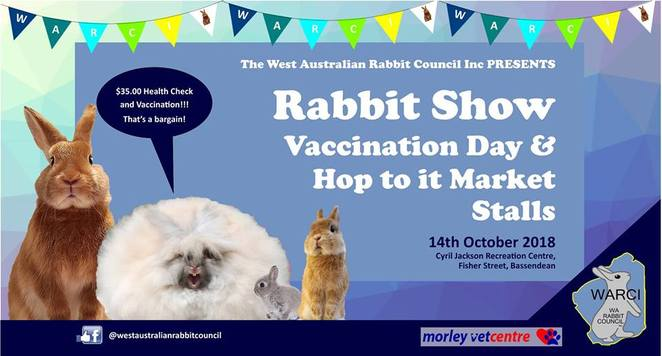 Rabbit show Perth, bunny show Perth, things to do in October, things to do with kids, show rabbits