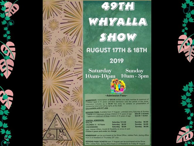 whyalla show, fireworks, whyalla, country shows, spectacular, family fun, entertainment, comedy, giant teddy bears, circus acts