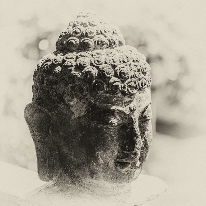 buddha, head, finding balance in a stressful world, meditation, statue, sculpture
