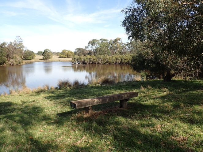 bushwalking, Cranbourne Botanic Gardens, wildflowers, wildlife, walking track, wetlands