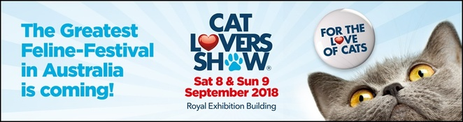 Cat,Lovers,Show