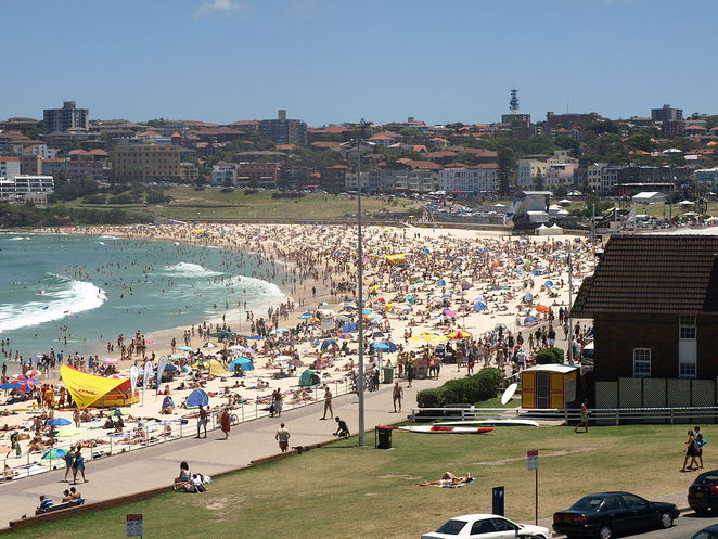 City Sightseeing Bondi Beach