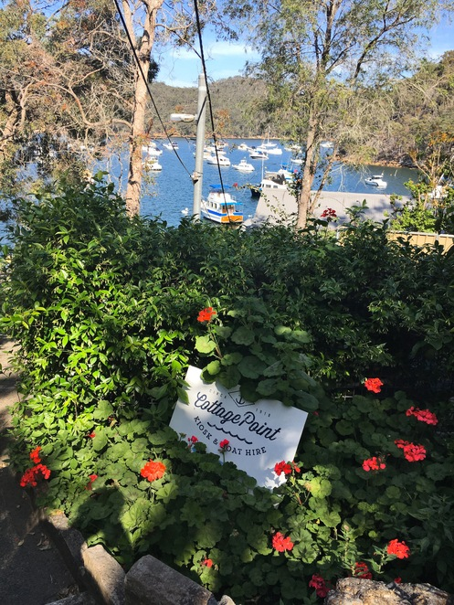Cottage Point, Bush, Flowers, Boats, Water