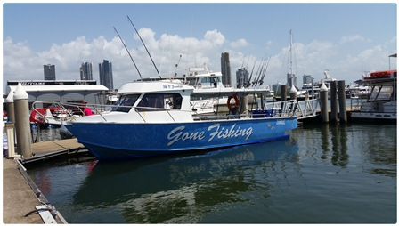 deep sea fishing, gold coast, bro hangout, guys day out