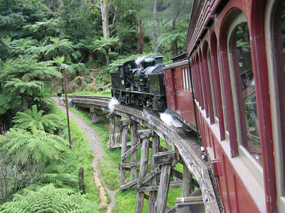 Puffing Billy Day Trip, Escape the City, The Dandenongs