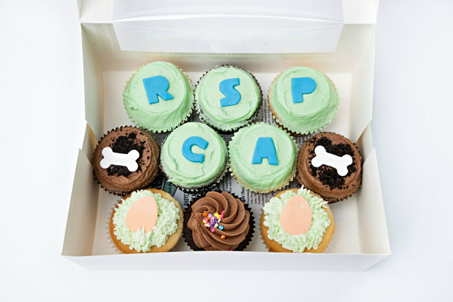rspca, cupcake day for the rspca, fundraiser, charity, cupcake day party, organise an event, cupcake day host kit
