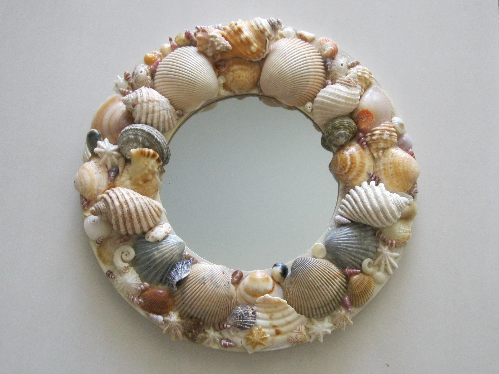 Make your own shell art everywhere for What are shells made of