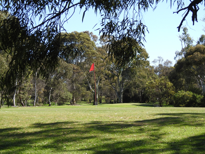 South Australian wildlife, South Australian tourism, Wildlife photography Wildlife stories, Red House Cafe, SA golf courses