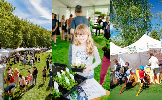 spring into gardening 2019, community event, fun things to do, what's on stonnington, victoria gardens, free event, sara oteri masterchef finalist, stage performances, activities, entertainment, costa georgiadis, abc's gardening australia, gardens, garden lovers, garden specialists, garden ideas and information, green thumb, home and garden, lifestyle, sustainable living, ehthically sourcing, edible gardening, environmental friendly, food trucks