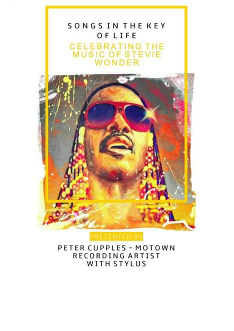 Stevie Wonder tribute concert