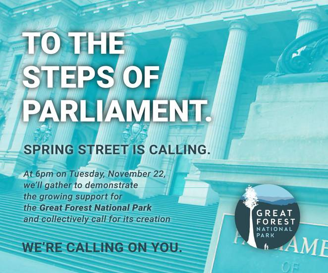 to the steps of parliament, parliamenbt house, great forest national park, protest, march, save the planet, save the forest, community event, climate change, eco system, nature,, trees, unusual things to do