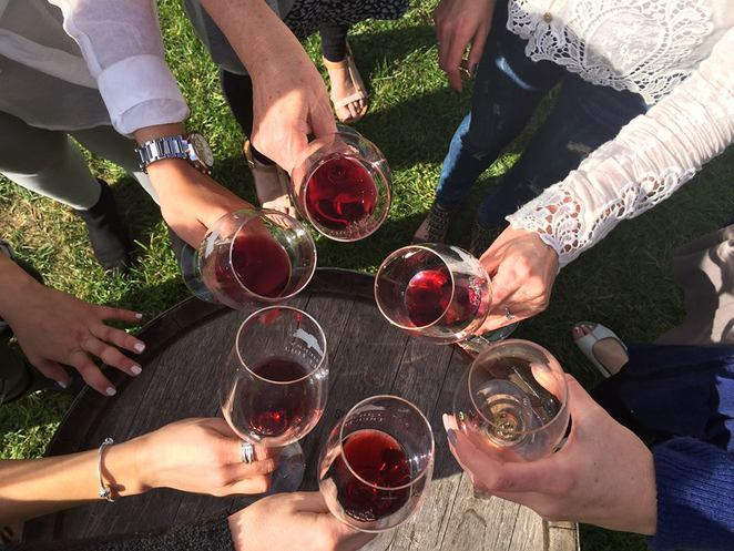 winery tours, highlands food and wine, wine tasting bowral, mediums nsw