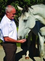 Andrew McLean, research, coaching, equine, learning, training,behaviour, elephants, Tom Roberts