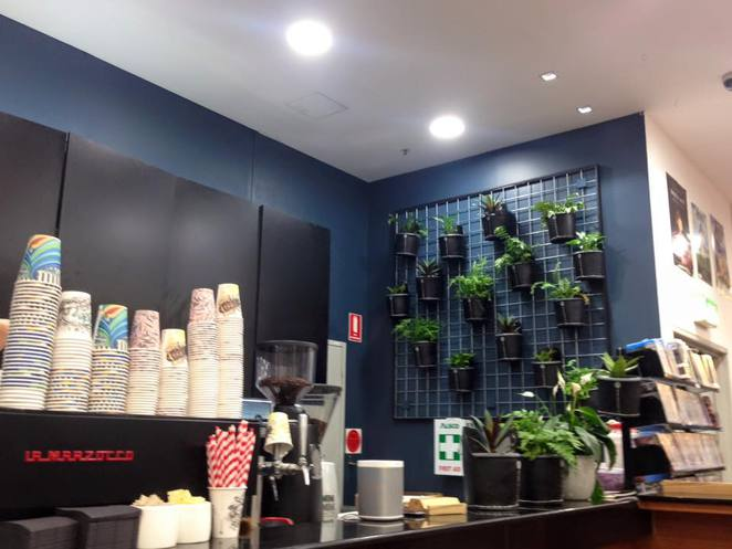 Black Star, Cake, Dessert, Bookstore, Coffee, GMV, Sydney, CBD, Green Tea, Watermelon, Rose