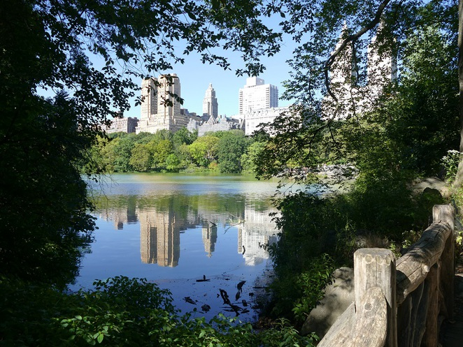 Central Park,NEW YORK CITY