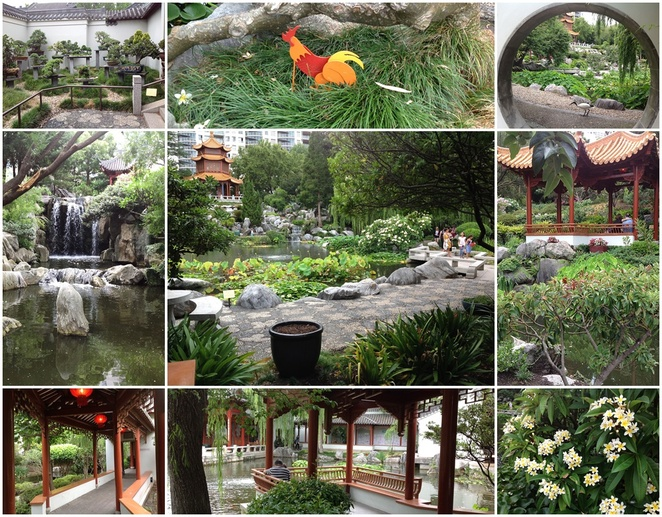 Chinese Garden of Friendship, Darling Harbour, Sydney