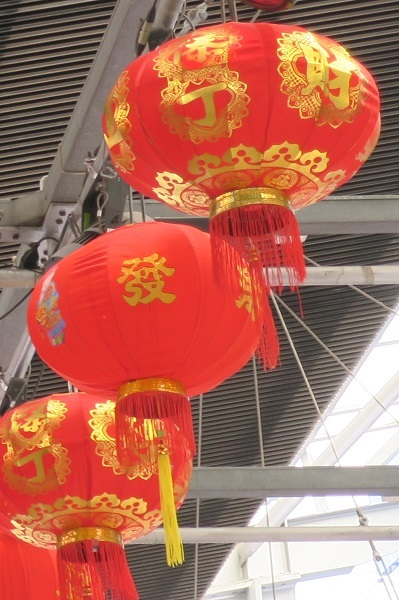 Chinese, lunar, new year, Sunnybank, year of the pig, rooftop party, fireworks, lion, lanterns, may cross