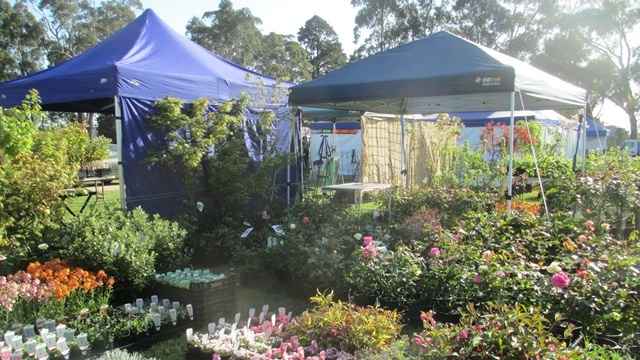 Displays,at,Garden,Expo
