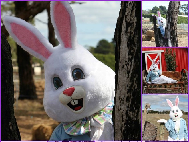 easter, easter events in melbourne, easter show, easter egg hunt, easter bunny, good Friday appeal, easter celebrations in Melbourne, easter for children, things to do at easter, easter in Melbourne,