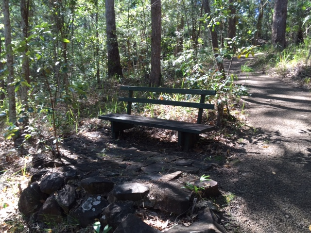 Foote Sanctuary of Buderim, oasis, fauna and flora, six different walks, stunning birdlife, picnics, electric barbecues, gazebo, parking, sanctuary, walkers, trails, myriad of bird calls