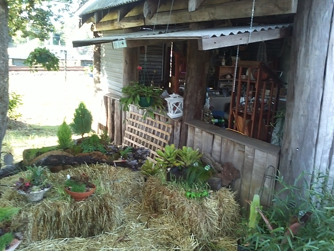 garden display, gallery, fairies, succulents, airplants, gifts