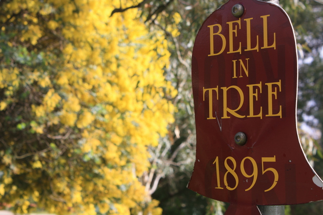 Bell Tree and Bell Paddock Venue for Spring Fair