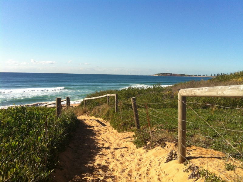Beachside Cafes Northern Beaches
