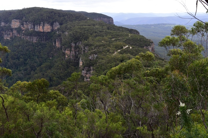 Narrowneck lookout Katoomba, Blue Mountains, Bushwalks Katoomba, Jamison Valley, Megalong Valley, lookouts, blue mountains lookouts