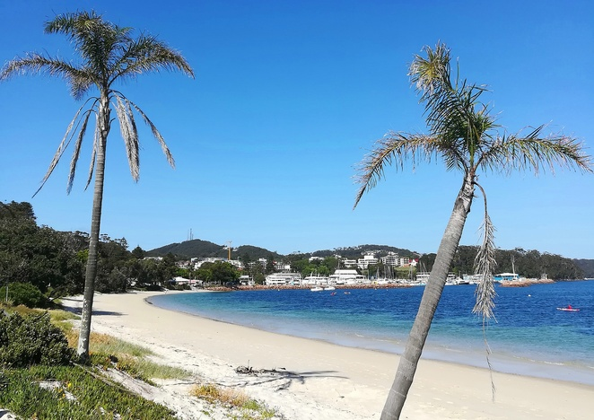nelson bay, road trips, from sydney, port stephens, NSW, short road trips from sydney, bays, beaches, tourist destinations, things to do, swimming, palm trees, best swimming beaches, NSW,