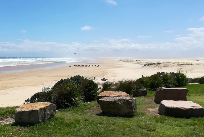 shoal bay, shoal bay country club, nelson bay, port stephens, NSW, day trips from newcastle, things to do, short, road trips, sydney, anna bay, birubi beach, camels, stockton sand dunes, worimi national park, activities, family, beaches,