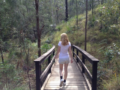 The 800m summit walk is one of the easiest you could hope for in the Glass House Mountains National Park