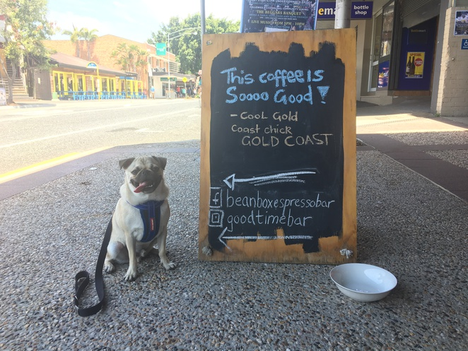 bean box espresso bar, west end, espresso bar, coffee, brisbane, cafe, inner suburbs, western suburbs, dog friendly, drinks, bar, good time bar