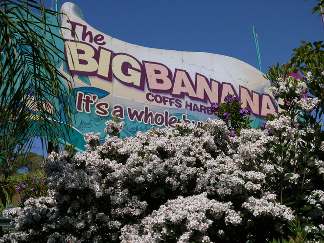 Big Banana Theme park