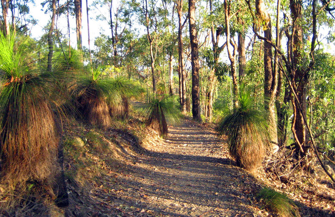 The path on the side of Milne Hill