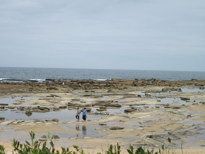 Central Coast, Beach, Rockpools, Towoon Bay, Family Friendly