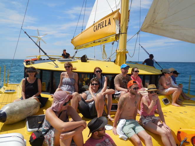 Charter 1 Sailing and Snorkelling Cruise to Rottnest Island