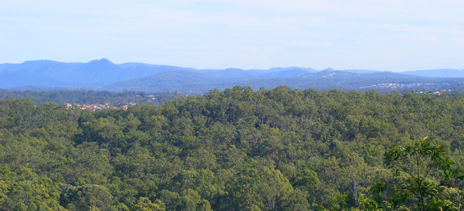 Chermside Hills Reserve seen from Milne Hill Reserve