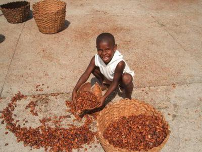 cocoa production, child labour
