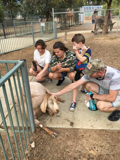 Cohunu Koala park, Byford, things to do in Byford, wildlife park, day out in perth, escape the city