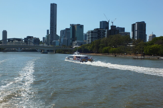Day Tripping to Brisbane, Koala and River Cruise, Mirimar Cruises, Brisbane River, Lone Pine Koala Sanctuary, must-do experience, 75 minute cruise, informative commentary, historical facts, every day except Christmas Day and ANZAC day, Koala Express, South Bank Cultural Centre Pontoon, Stanley Place Car Park, river city, city of bridges, Merivale Bridge, Kurilpa Bridge, William Jolly Bridge, Gas Stripping Tower, heritage listed, West End, Wesley Hospital, Auchenflower, iconic Regatta Hotel, Coronation Drive, Toowong, University of Queensland, Green Bridge, Eleanor Schonell Bridge, Queensland Tennis Centre, Tennyson, water sports, bull sharks, longest river, a definite 10/10