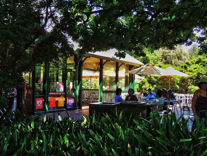 free things to do in adelaide, fun things to do, in adelaide, what's on in adelaide, adelaide kids, what to do in adelaide, fringe festival, garden of unearthly delights, free events, botanic gardens restaurant