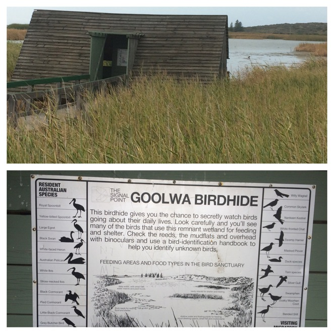 Goolwa Bird Hide