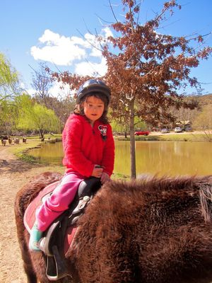 Megalong Valley Heritage Farm